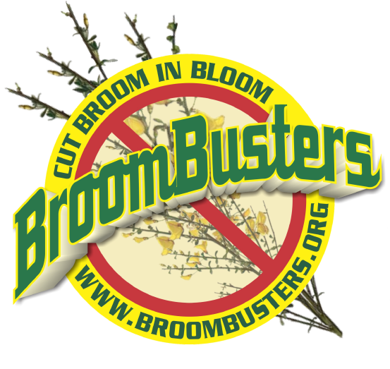 BroomBusters Logo